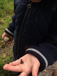 Baby méga baby frog