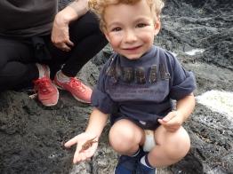 Crabby des Açores